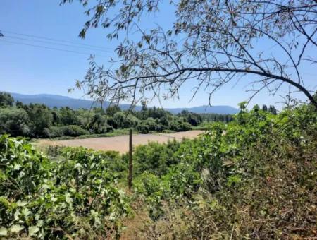 Muğla Ula Ataköyde Satılık Kelepir 725 M2 İmarlı Arsa Ve Köy Evi